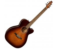 SEAGULL 041824 - Performer CW CH Burnt Umber QIT with BAG