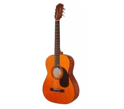 MAXTONE WGC360 Акустическая гитара